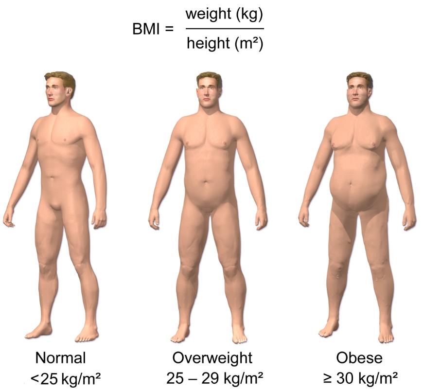 Схема веса